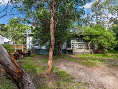 Photo for PARKER STREET - Anglesea