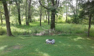 View from the back porch, note the fire pit.
