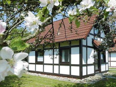 Photo for Holiday village Altes Land, Hollern-Twielenfleth  in Zwischen Weser und Elbe - 4 persons, 2 bedrooms