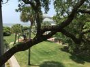 View of ocean from master bedroom porch over looking  croquet lawn