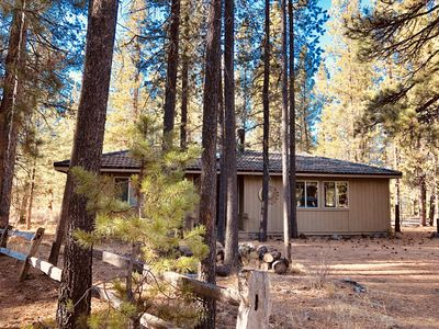 Photo for 7 Otter Cabin: Close to Village & SHARC