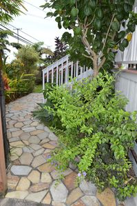 Cozy home w/ocean view and AC, walk to downtown and Rainbow Falls