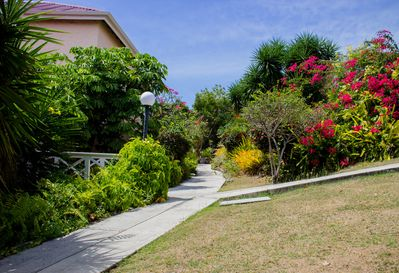 Beautiful, well maintained gardens/grounds