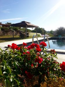 Photo for DOMAINE DE CHARME IN DORDOGNE WITH PRIVATE SWIMMING POOL