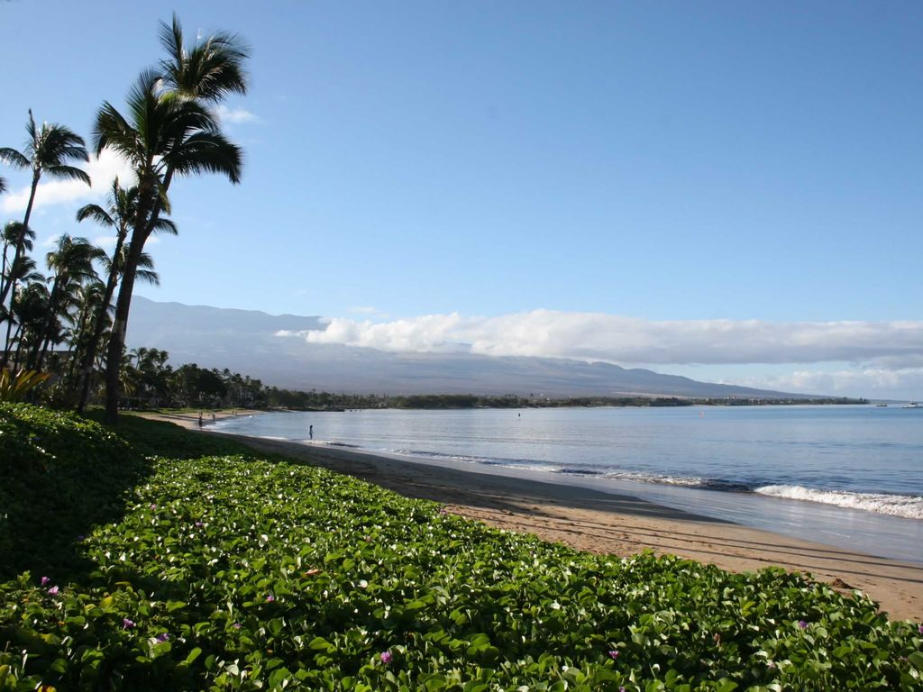 Sugar Beach Maui Direct Ocean Front Best View Value