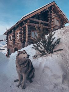 Photo for Spacious chalet with mountain view