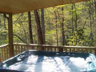 Photo for Cabin on the Hill - A Romantic 1 BR 20-Acre Country Retreat - Near Asheville