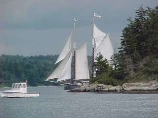 Enjoy watching the schooners sail by