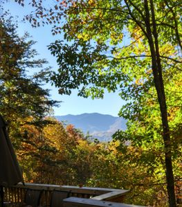 Enjoy Fresh Mountain Air, Secluded Parks, Golfing, Hiking- At Pet Friendly Cabin