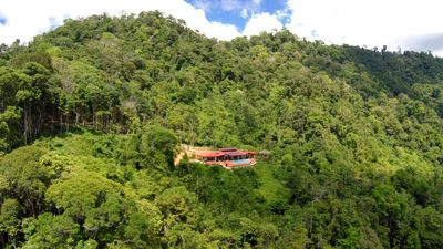 Madreselva is nested in the rain-forest- we wake up to birds & howling monkeys