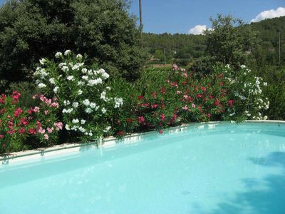 Photo for Detached house in Green Provence with heated swimming pool