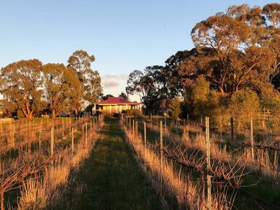 Photo for 1BR Bed & Breakfast Vacation Rental in Amherst, VIC