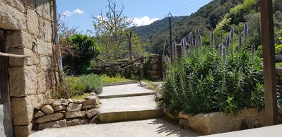 Photo for Apartment / Studio in the mountains with covered terrace for 2 people in Corsica