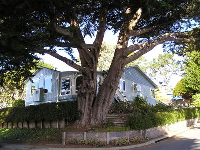 Photo for Moss Beach House with spectacular Ocean View and walking distance of beaches.