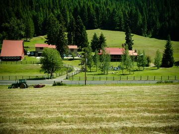 Charming country accommodations at Brookside Acres/horse and rider accommodation