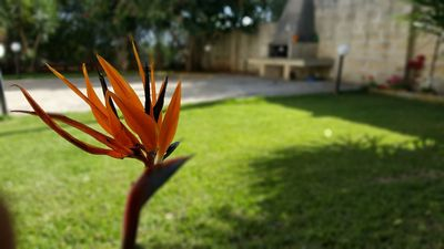 Photo for Spacious Villa with Wi-Fi, Garden & Terrace; Parking Available