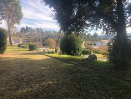 Photo for 3BR House Vacation Rental in Atascadero, California