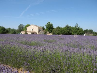 Photo for Beautiful gite within a farmhouse, private terrace, shared pool, garden and BBQ