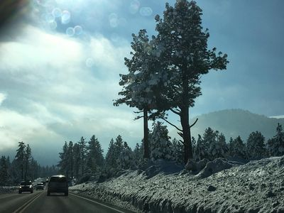 Photo for Close to skiing and Lake Tahoe!