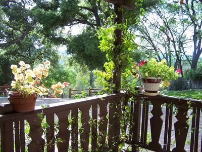 View from the Guest House porch.