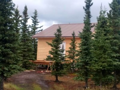 Photo for Denali Wildlife Moose Cabin  Luxury with a touch of Rustic