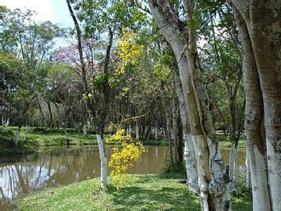 Photo for 4BR Country House / Chateau Vacation Rental in São Bernardo do Campo, São Paulo