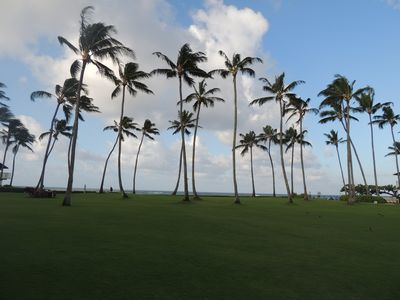 The expansive ocean side lawn.  A great place to play and relax.