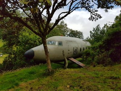 Photo for A different experience in a plane lost in the Colombian forest