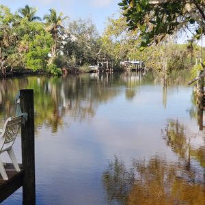 Photo for Treetops Private Cozy Tranquil Cottage / Imperial River w/Dock, wildlife,kayaks