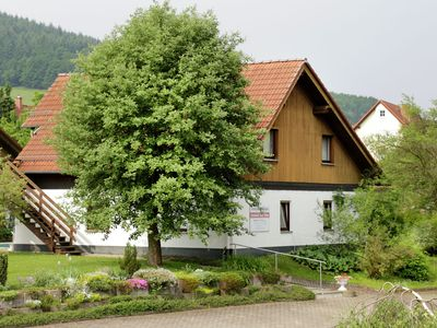 Photo for Nicely located apartment near Bad Wildungen with pool in the garden