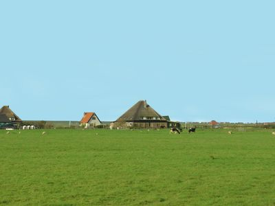 Photo for Holiday home in the middle of the polder landscape, with magnificent views