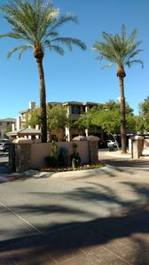 Photo for Best location in Scottsdale AZ for all it has to offer-SPRING TRAINING, TOO!