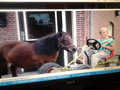 One of our go-karts with Bonny the pony