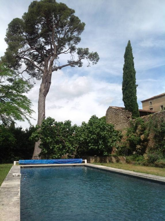 House With Garden And Pool In Castle Park Vallabrix Languedoc Roussillon
