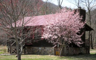 Vrbo | Vogel State Park, Blairsville Vacation Rentals: house