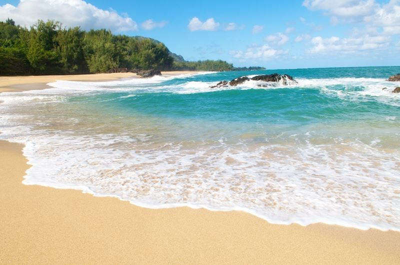 Waipouli Beach Resort D204 ~ RA50894