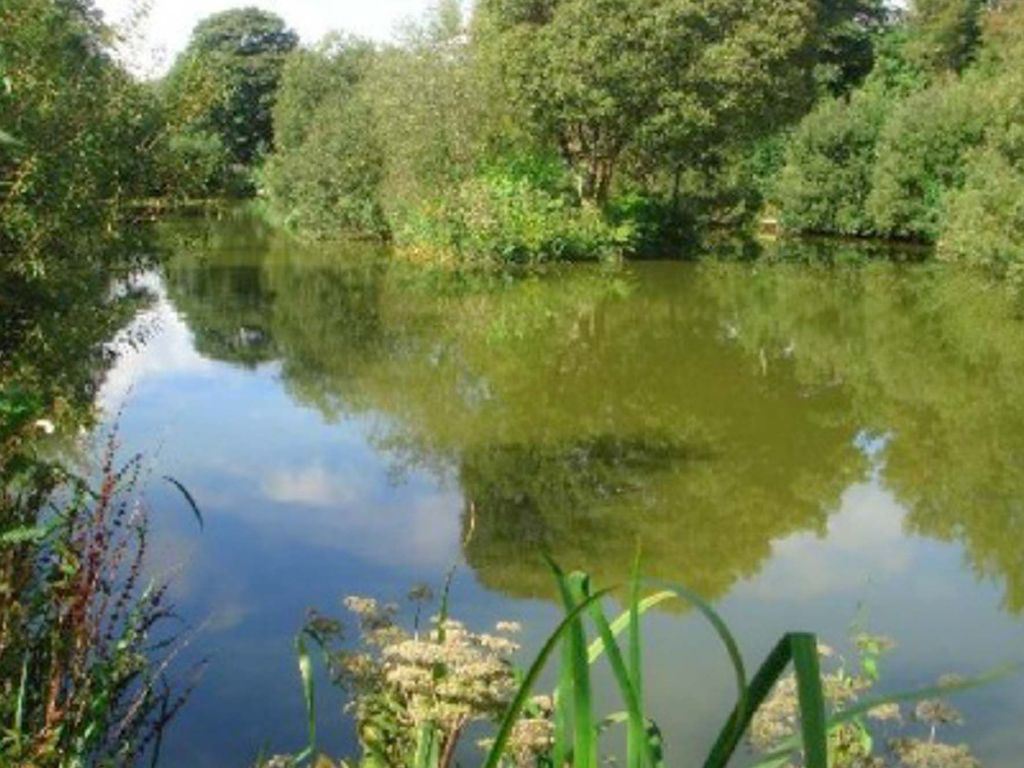 Fishing in private lake included saint austell cornwall for Private fishing lakes