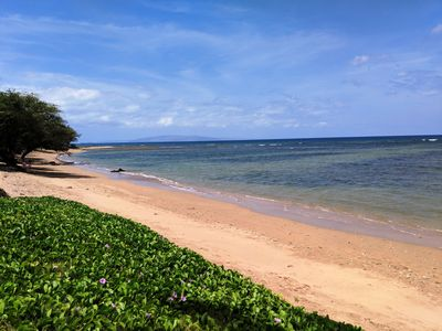 Photo for Great Summer Special!  Maui Sunset 213A ~ 1 BR, 2 BA ocean views!