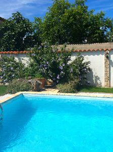 Photo for Traditional Istrian Stone House with private pool