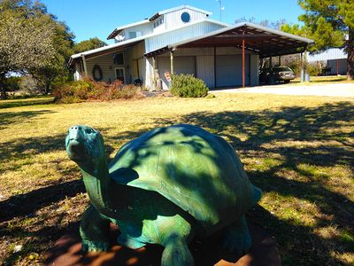 A Galapagos Tortoise by renowned wildlife artist Tom Tischler greets you!