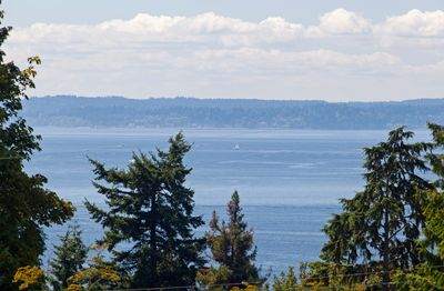 Stunning Puget Sound and Mountain View