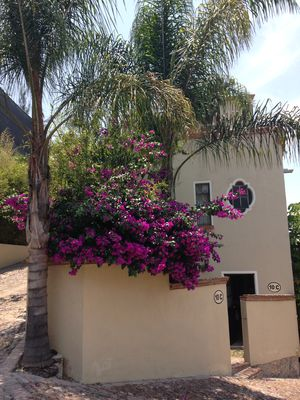 Photo for Centric, Cozy Casita with swimming pool and Gym.