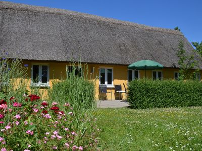 Photo for A pretty thatched house, perfect for a family