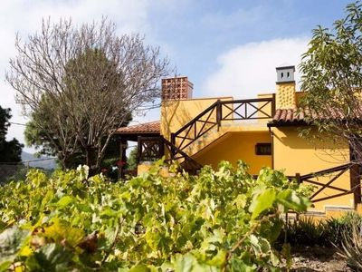 Photo for Cottage for 4 guests with 70m² in Icod de los Vinos (119700)