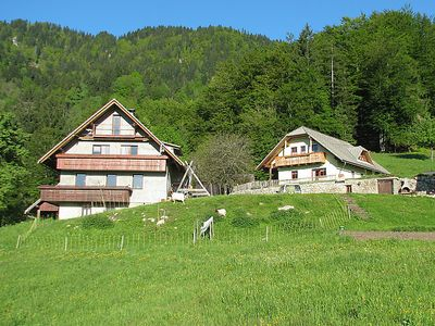 Photo for Apartment Tourist farm Pr' Vazniku in Bohinj - 3 persons, 1 bedrooms