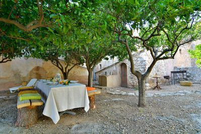 BBQ and dining under orangetrees