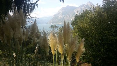Photo for Oasis of relaxation in the middle of Lake Iseo 017111-CNI-00002