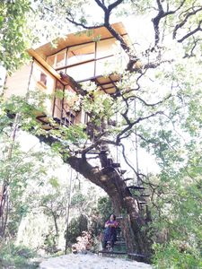 Photo for TREE HOUSE VIEW ON THE GULF