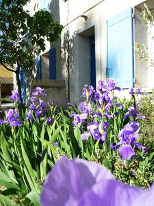 Photo for 3BR House Vacation Rental in Isle sur la Sorgue, RA