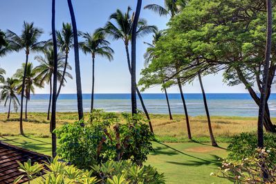Fully landscaped yard out to the beach.